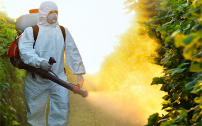 Oferta cursos aplicador de fitosanitarios y más en Cantabria