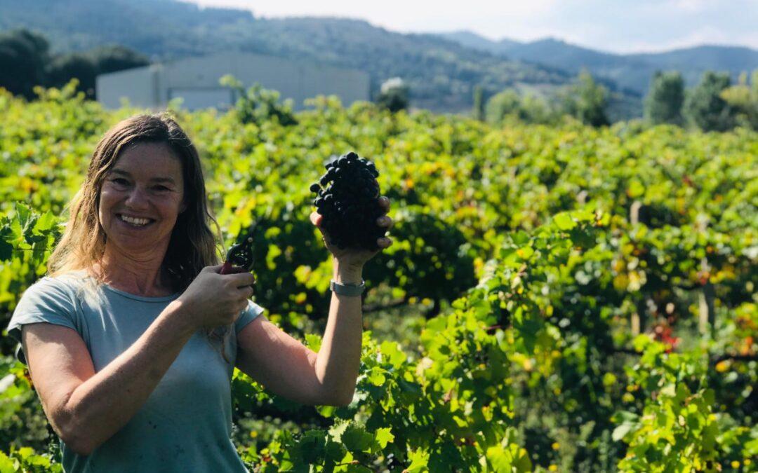 Vinos y orujos de Cantabria